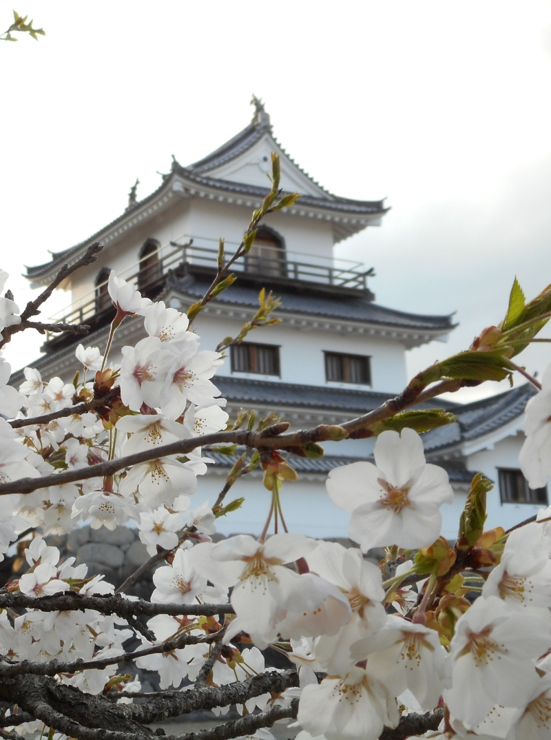 Shiroishi Castle, which was rebuilt about 20 years ago.
