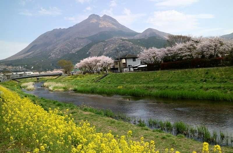 Yufuin in Spring
