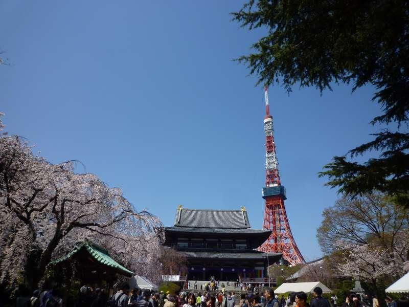 Der Zojo-Tempel und der Tokio-Turm