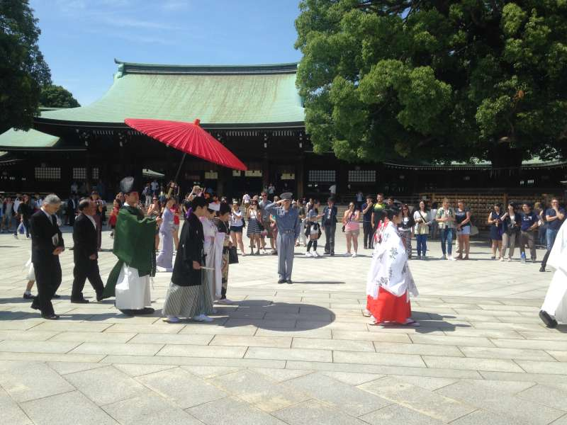 If we're lucky, we could catch a glimpse of a wedding ceremony at the Meiji-jingu shrine. (#1)