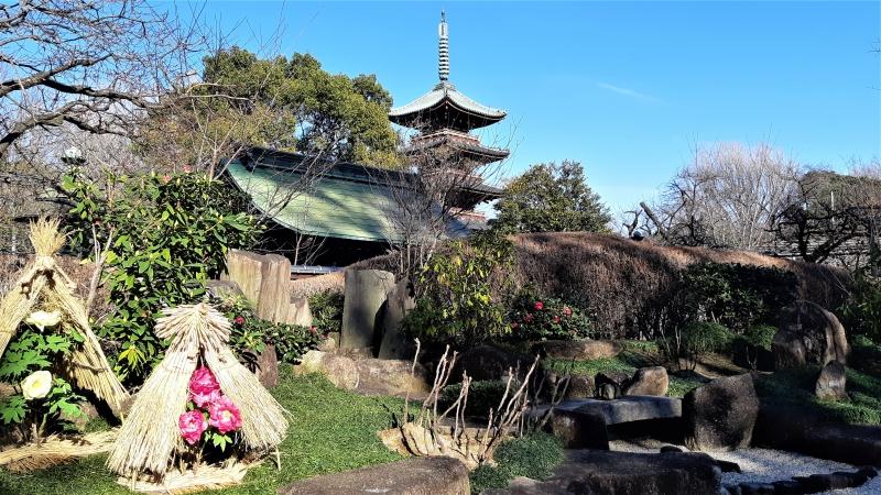 Ancient pagoda & peony flowers