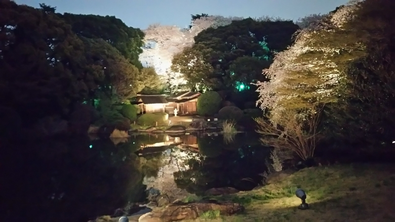 Traditional garden of Tokyo National Museum at night