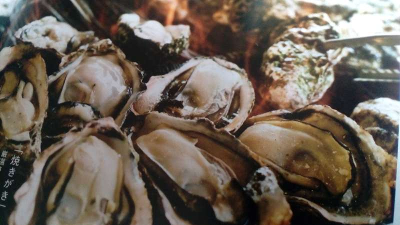 Oysters, you can enjoy the grilled oysters grown in Miyajima