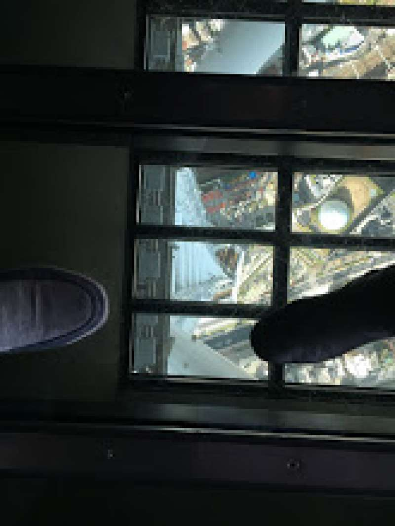 View through the glass on the floor in the deck:  Very scared!