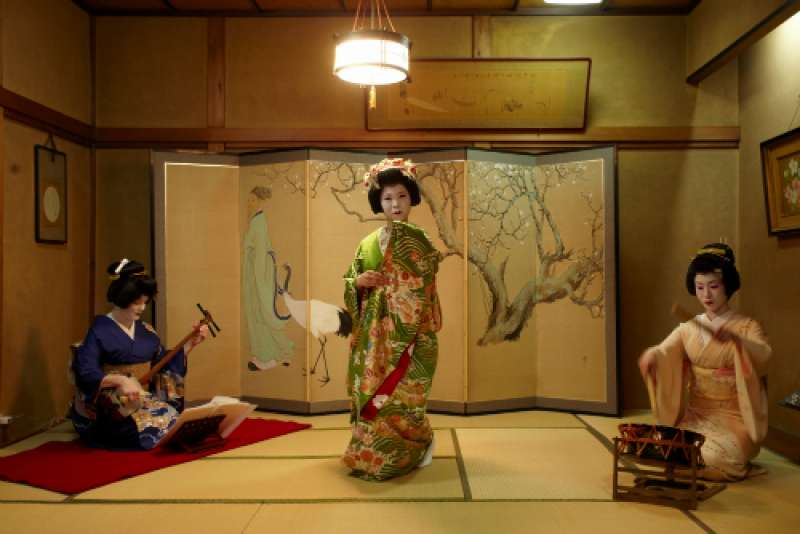 Private Traditional Geisha Experience with Banquet Show in Tokyo