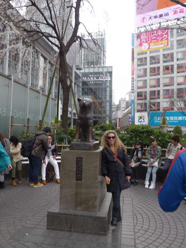 The most famous Japanese statue around the world, i.e. the Hachi.
