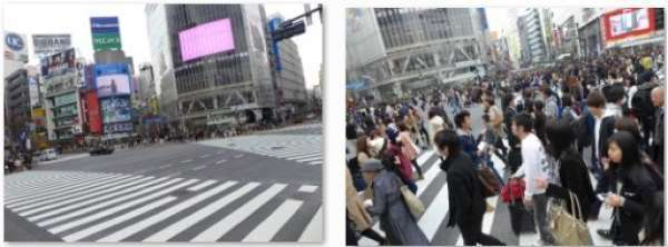 Most foreign visitors are surprised at the number of people who pass the road in Shibuya cross.