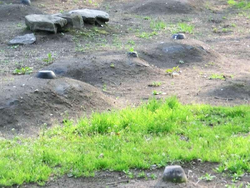 nuique burial site