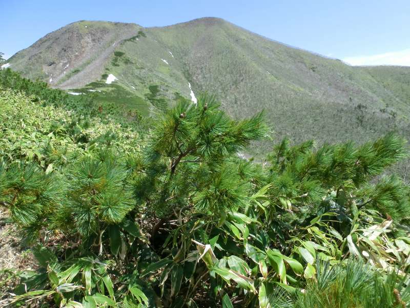 The mountain top from the 8th station. Very steep slopes are waiting for us.
