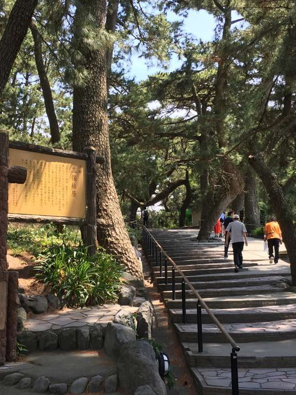 Kamino-michi gate to Miho pine grove