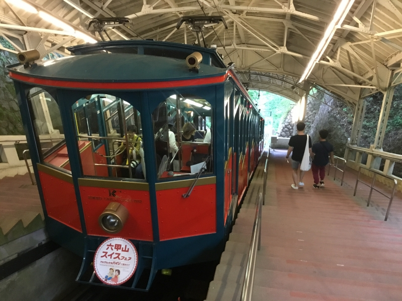 To take train, bus and cable car with a little walking toward top of Rokko mountain station.
