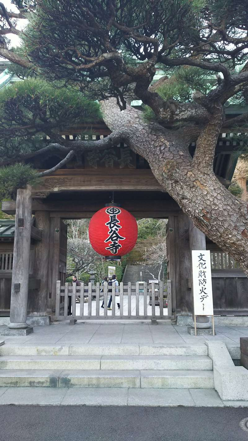 Gate of Hase-dera or Hase temple