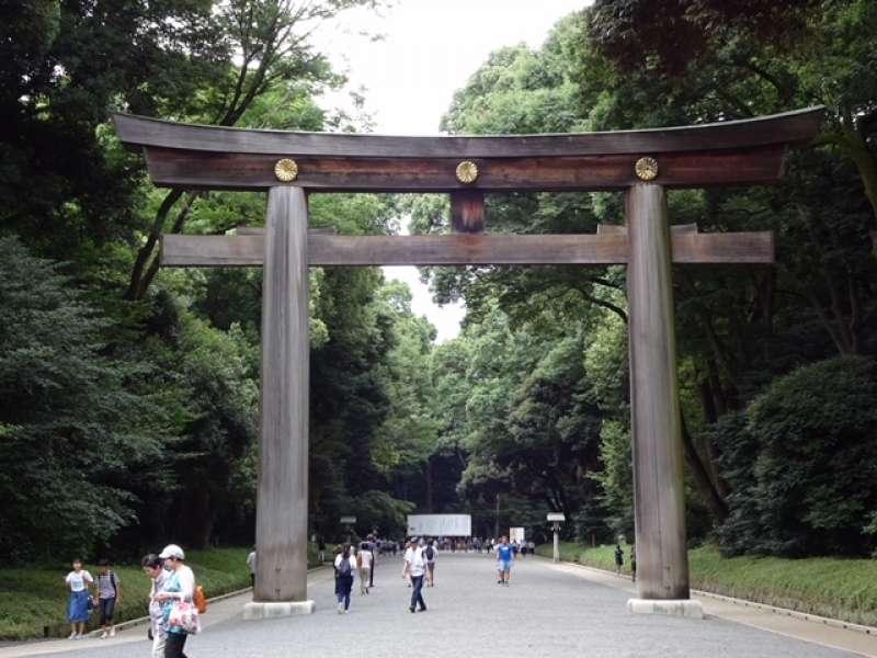 Meiji Jingu Shrine / Omotesando Half-Day Tour