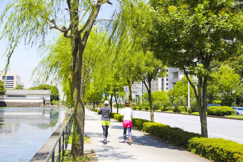 Enjoy jogging by your pace while looking beautiful views around Tokyo Imperial Palace.
