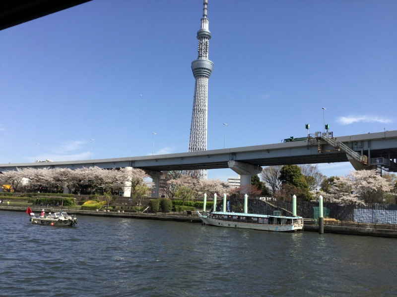 River Cruising (View of Tokyo from different angles)