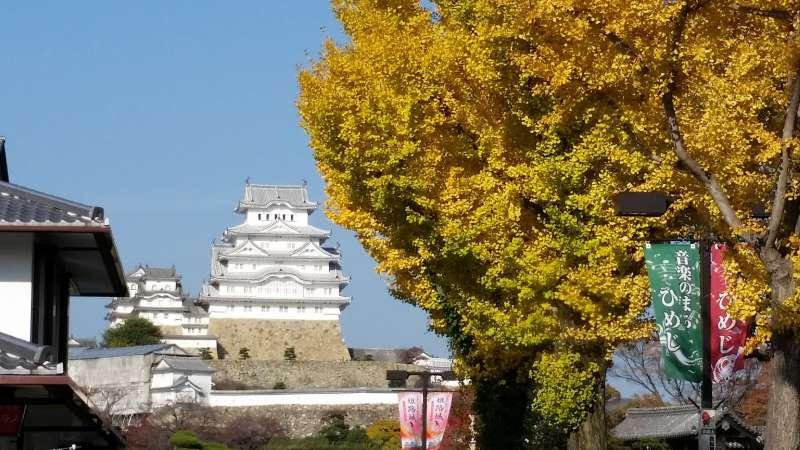 Himeji Castle (fall season)