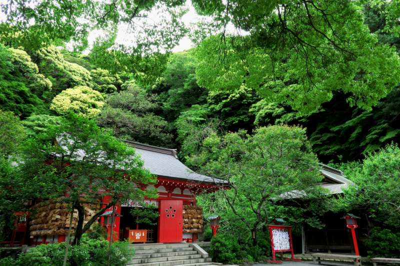 Bamboo Temple, Sugimoto Temple, and three other attractive spots in Kamakura