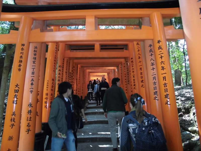 Fushimi Inari Grand Shrine, Torii gates