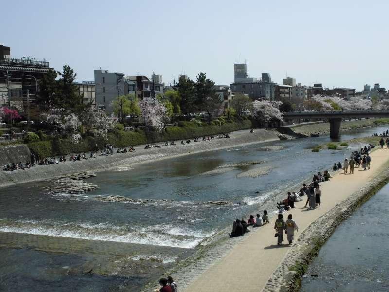 Kamo River,Shijo Bridge area