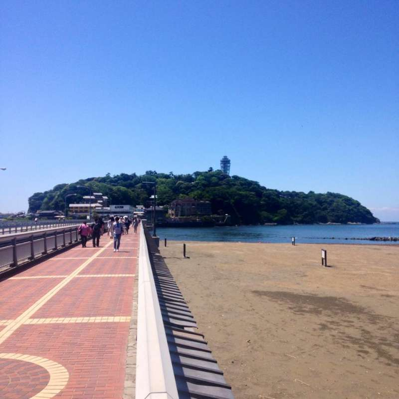Enoshima island is a popular tourist destination for Japanese. There are some attractions such as a lighthouse, a botanic garden, an old cave...  really worth a visit.