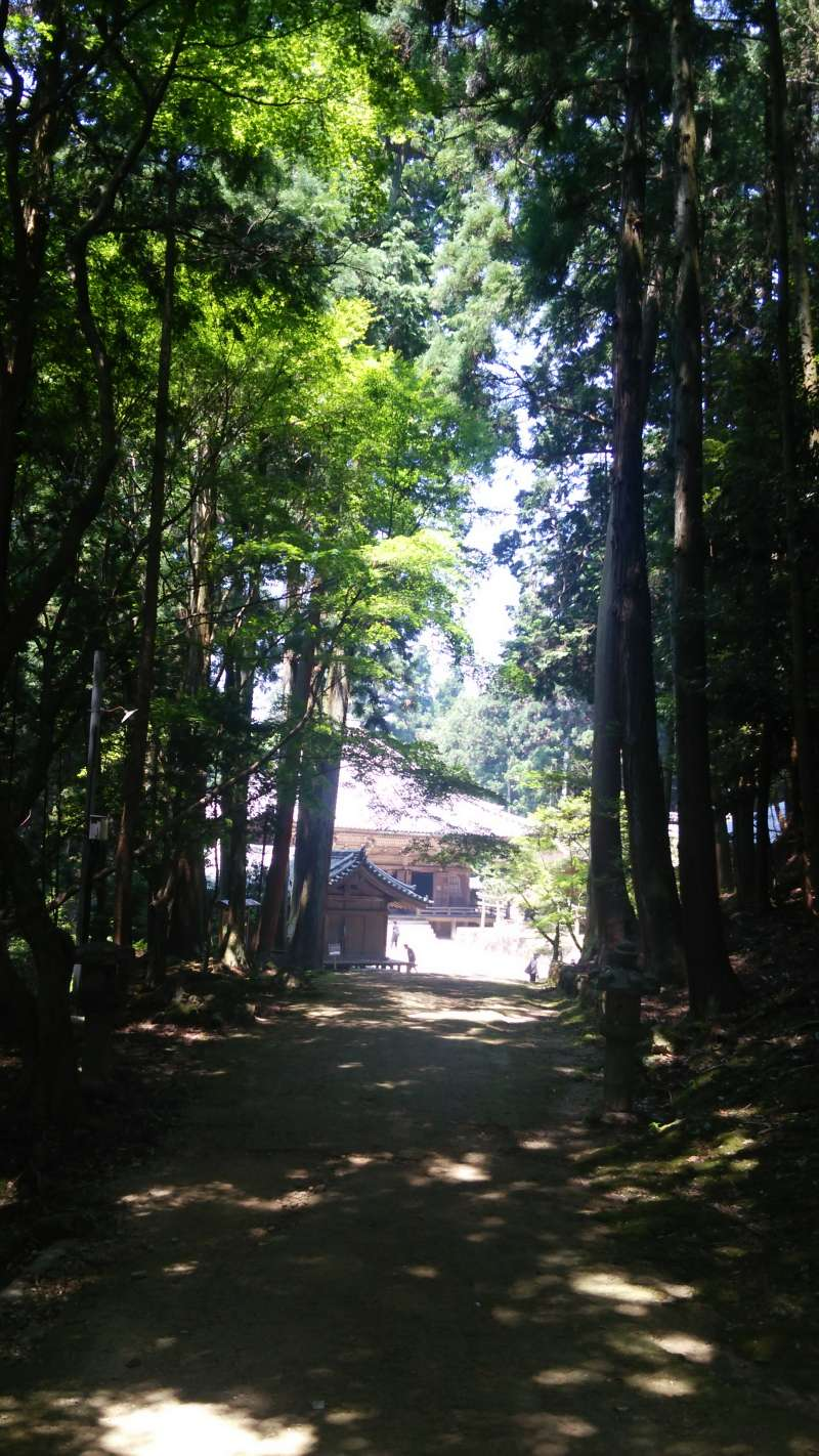 Engyoji Temple has unspoiled atomosphere to refresh your feeling