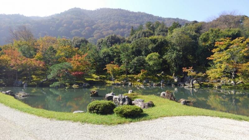 Kyoto Essentials: Full-Day Private Tour