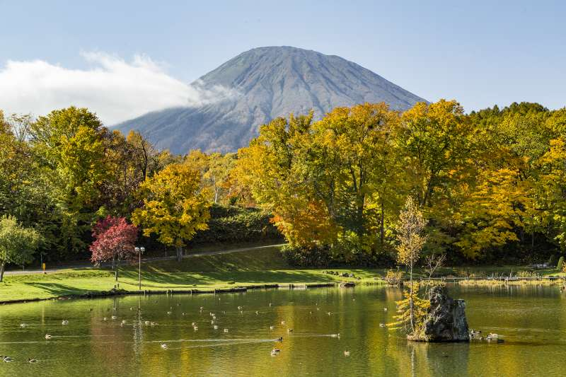 Niseko Private Day Tour
