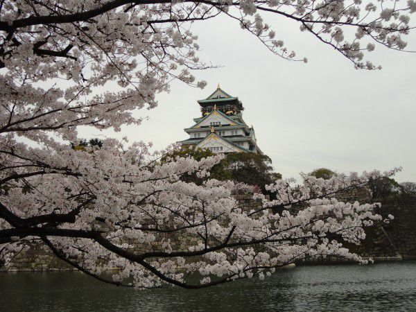 Beautiful Osaka Castle !!