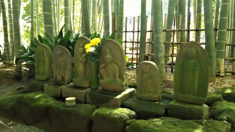 In the bamboo grove of Hokokuji temple