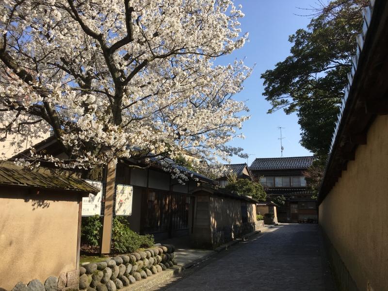Historic Street of Nagamachi Samurai District (Kanazawa)