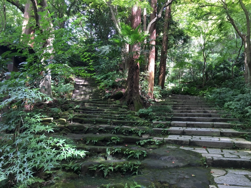 Mossy stone stair cases of Zuisen-ji temple