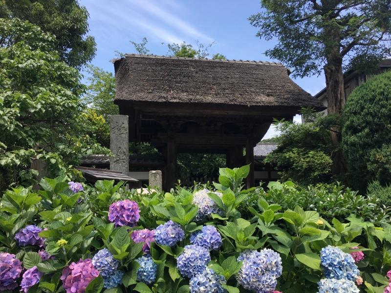 The main gate of Gokuraku-ji temple