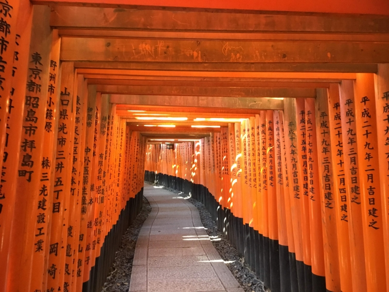 The highlight of the shrine  is the rows of torii gates, known as Senbontorii. The custom to donate a torii started to spread since the Edo period(1603-188) to get a wish to become true or to thank for a wish that became true.
