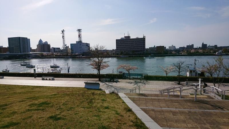 The Shinano River viewed from Toki Messe.