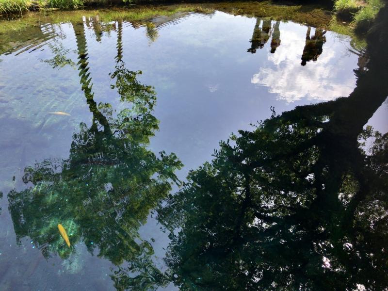 One of the eight ponds in Oshino Hakkai