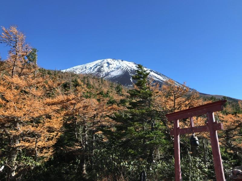 Mt Fuji, seen from Okuniwa Natural Park