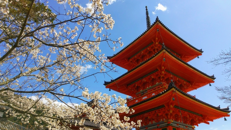 A Wonderful Half Day in Kyoto (East Kyoto) 4h