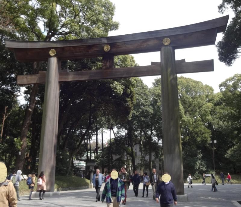 Torii Gate at Meiji Shrine