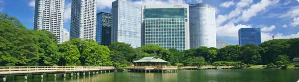 Hama-rikyu Gardens (300Yen (65 years old and over : 150 Yen) )