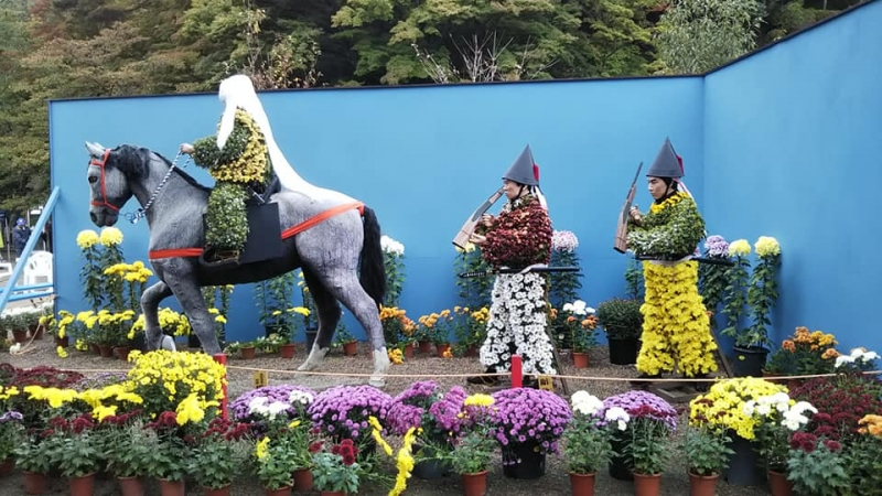 Chrysanthemum Festival is Held in October and November. (Schedule on each year should be confirmed in Advance.)