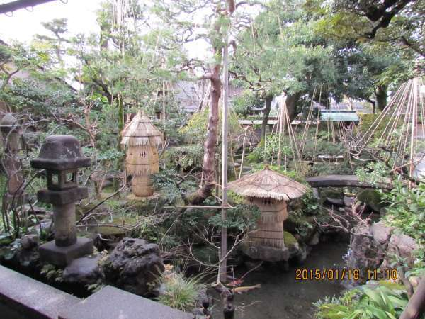 The Garden at Samurai House