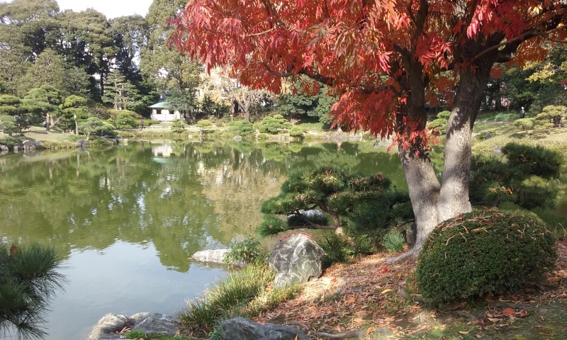 Los jardines de Kiyosumi Shirakawa
