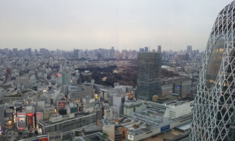 The view from the Metropolitan Government Building.