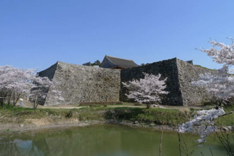 An unique castle which has no tower-keep. Because construction workers left here in the middle of this castle's construction to built Nagoya castle! This photo shows no castle-keep on the stonewall but a building named Osyoin where used to be local government, Sasayama feudal clan) office.