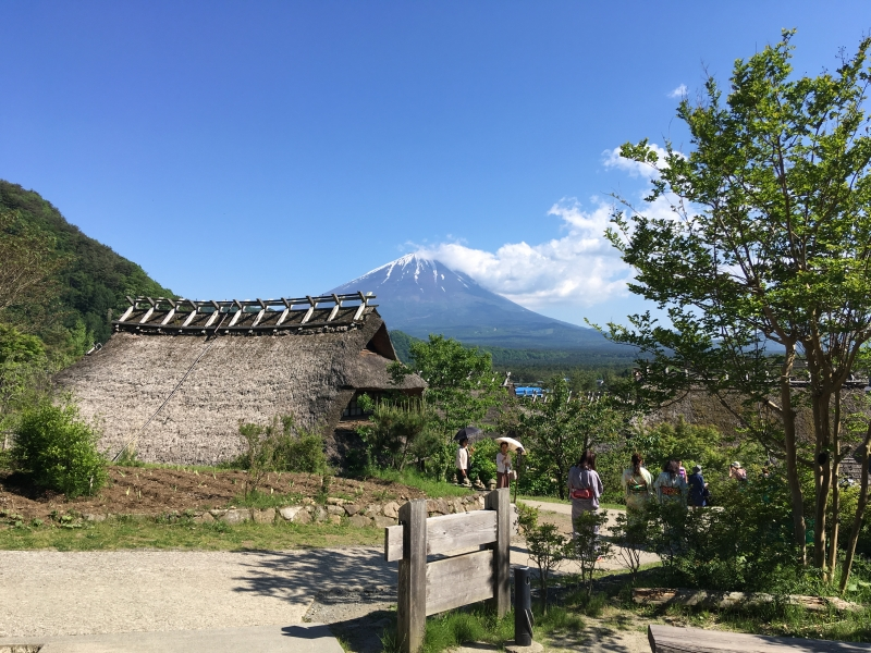 View of Mt. Fuji from Japanese village