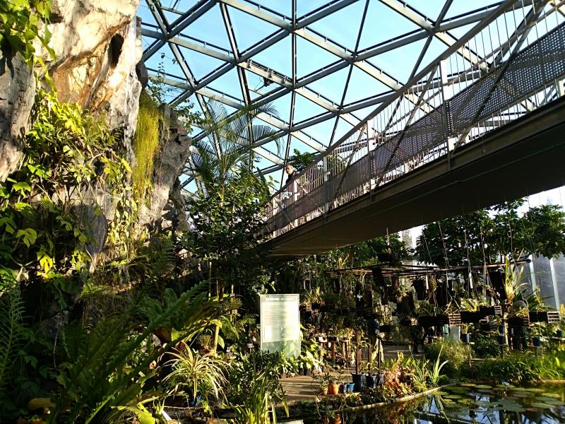 Greenhouse at Shinjuku-Gyoen