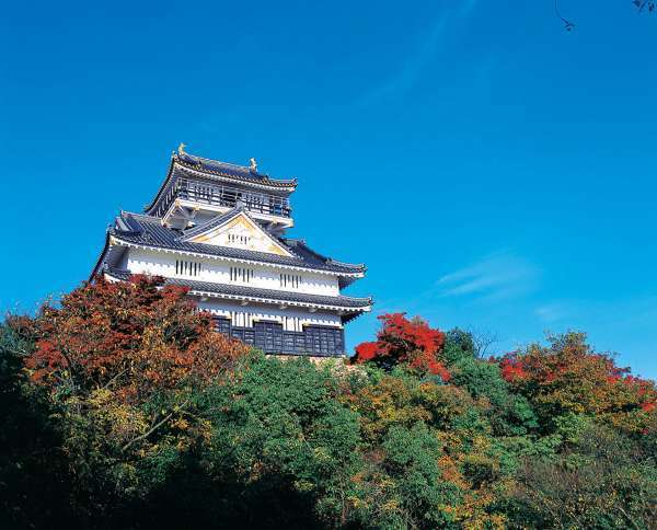 Gifu Castle stands on the top of Mt. Kinka, providing stunning views of Gifu City and the surrounding areas.