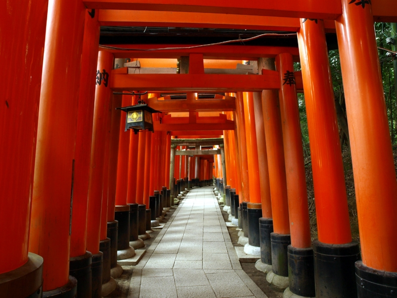 Fushimi shrine is the place shrine which attracts the most foreign visitors, A very Japanese feeling, here