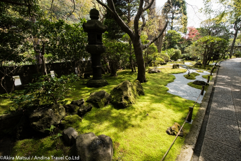 Jardin japonesa