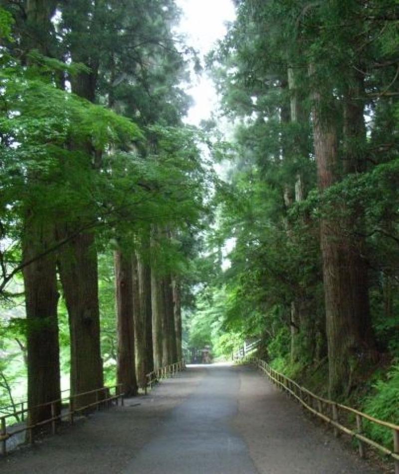 Path to Chusonji Temple.